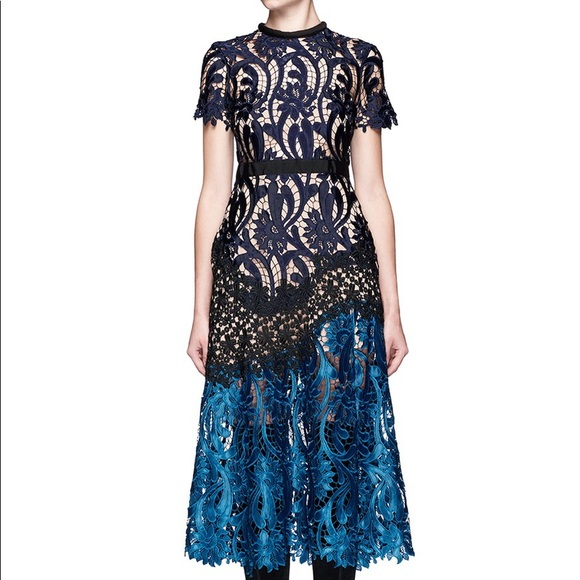 45e71e9b1ce0f Self-Portrait Floral Lace Prairie Midi Dress 10. M_5b40d3cda5d7c6f34df0c427